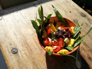 Sankesalat med geitrams, maiskolbe, squash, cherrytomat, gresskarkjerner og rosiner.